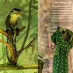 Apenstreken in de oertijd - Natura Docet Wonderryck Twente - foto Sarah Dona (midden)