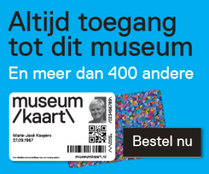 mk_banner_museum-site_blauw_large-rectangle