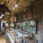 Tentoonstelling Natura Docet in Tierpark Nordhorn 2017